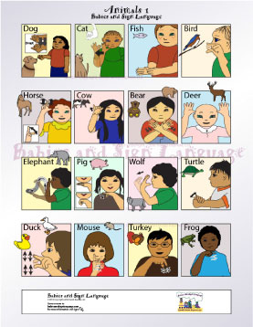 image of baby signing poster showing illustrated toddlers signing the sign for different animals